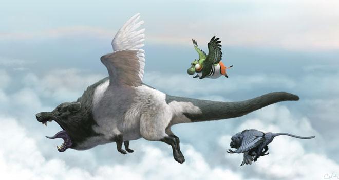 Flying High By Bobby Chiu