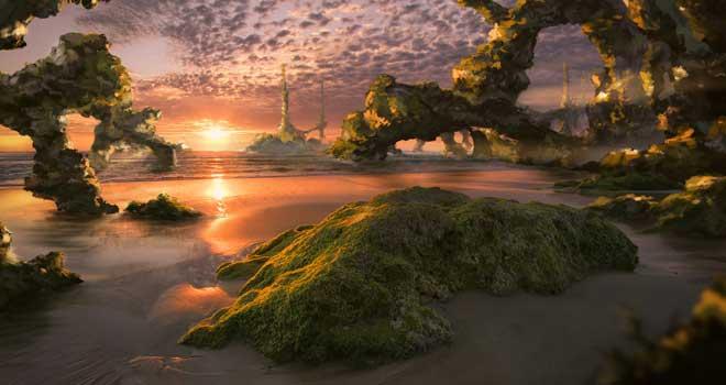 The Beach, Jacek Irzykowski
