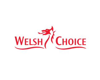 Welsh Choice, Jonny Dickins