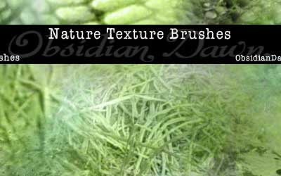 15 Nature Textures PS Brushes