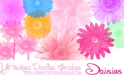 Daisies Brush Set