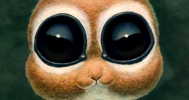 Hunny Bunny, Darko Kreculj