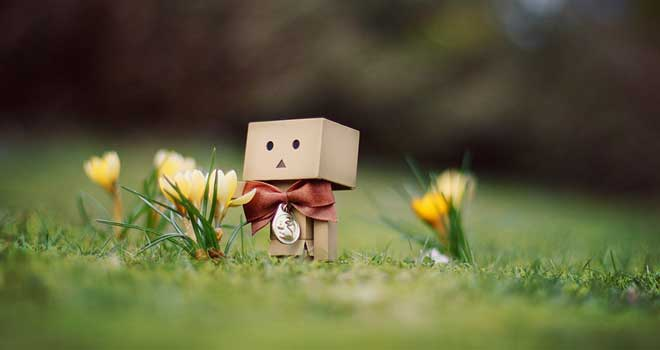Danbo March Wallpaper by Steffi Au