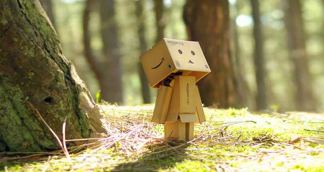 Danbo's Woodland Wander by Ryan Michael