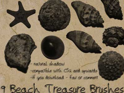 Beach Treasure Brushes by uninvited-stock