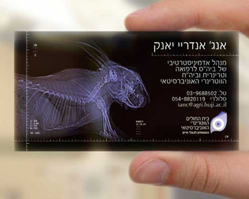 University Of Veterinarian Israel by Saatchi & Saatchi