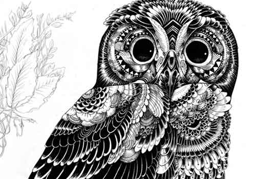 Animal Illustrations and Shirt Designs