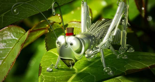 Anatomy of a Grasshopper by Matthew Lajoie