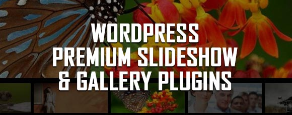 Best Premium SlideShow and Gallery Plugins for WordPress