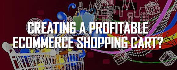 How to attract targeted shoppers by creating profitable eCommerce shopping cart?